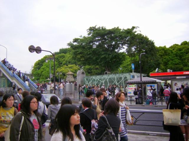 2010 4 44