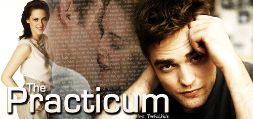 the practicum.png